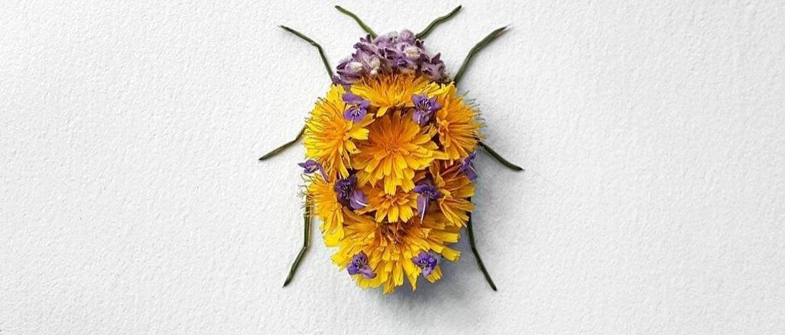 Çiçekten Böcekler