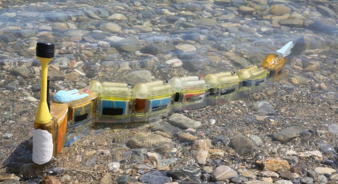 Suyu Kirleten Kaynakları Bulan Robot Yılan Balığı