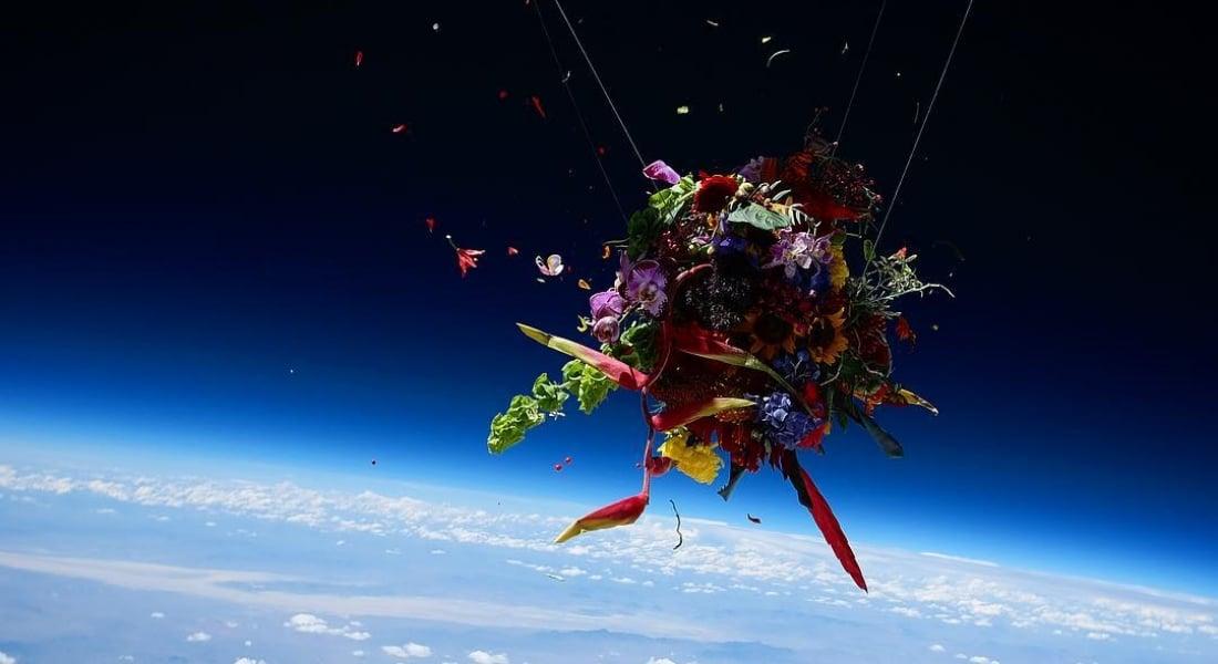 Eşsiz Fotoğraflar İçin Uzaya Gönderilen Çiçekler