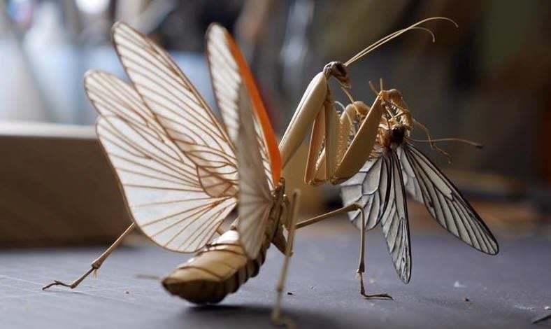 Bambudan Yapılmış Aşırı Gerçekçi Böcekler