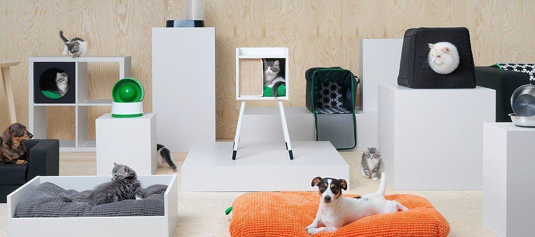 Kedi ve Köpeklerin Her Şeyi IKEA'da