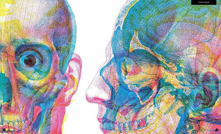 RGB Lensleri Hazırlayın, Ders Anatomi