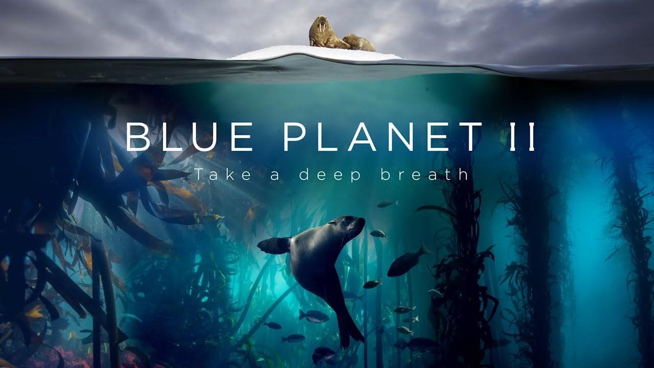 Radiohead ve Hans Zimmer'dan The Blue Planet II için Ortak Çalışma