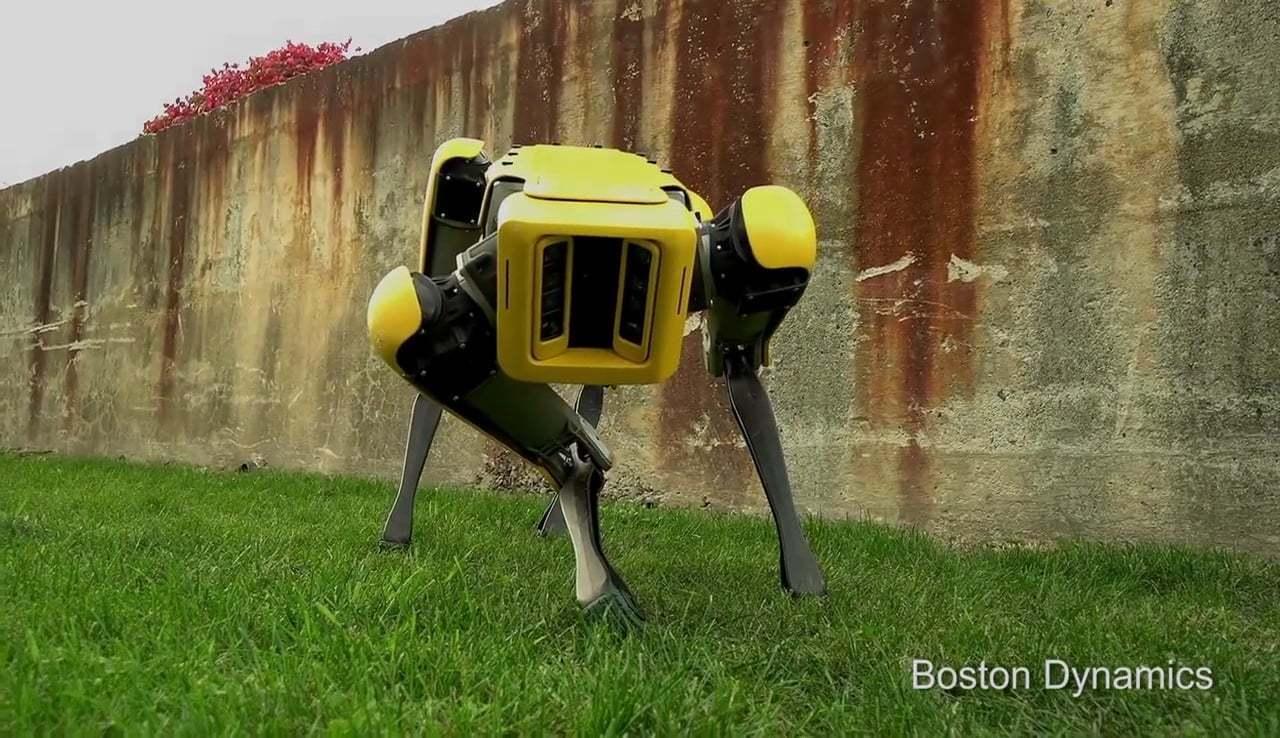 Boston Dynamics'ten Yenilenmiş Sevimli SpotMini