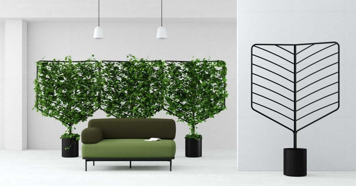 Evinizde Yeşil Bölmeler Yetiştirin