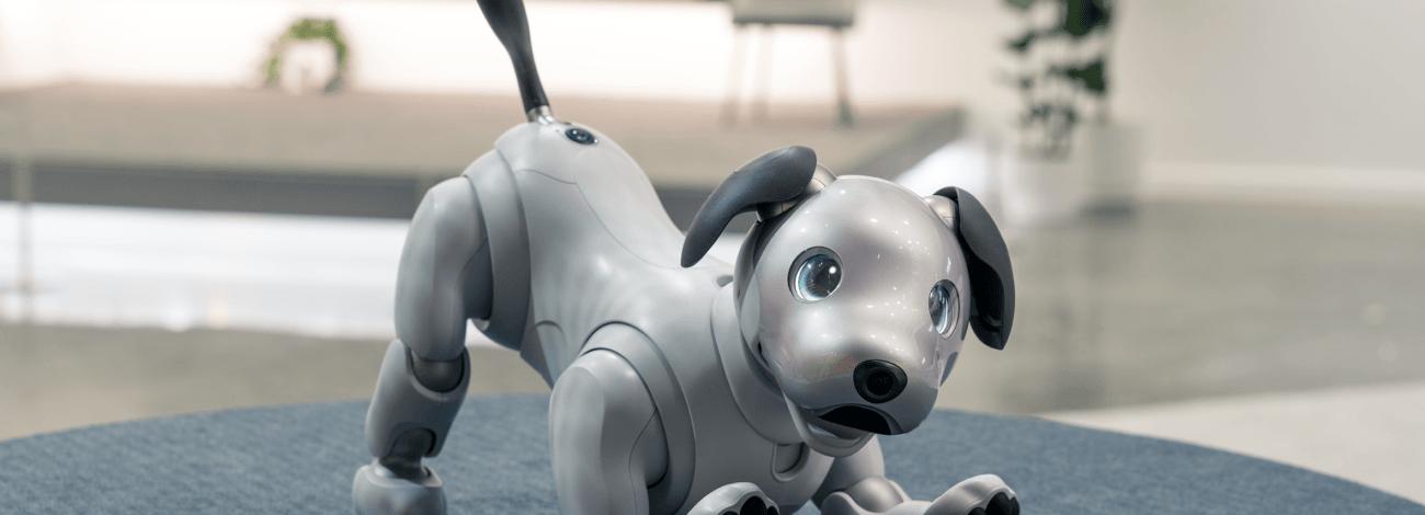 Sony'nin Sahibini Tanıyan Robot Köpeği Aibo