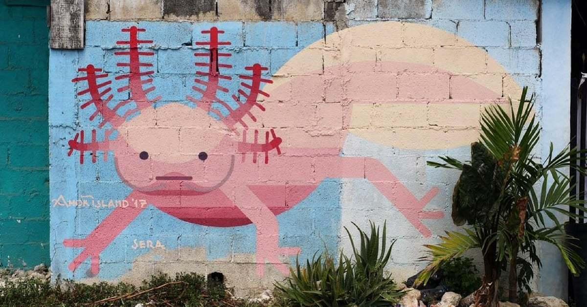 Yapıldığı Bölgeye Özgü Hayvan Türleri ve Bitki Örtüsüyle Bezeli Murallar