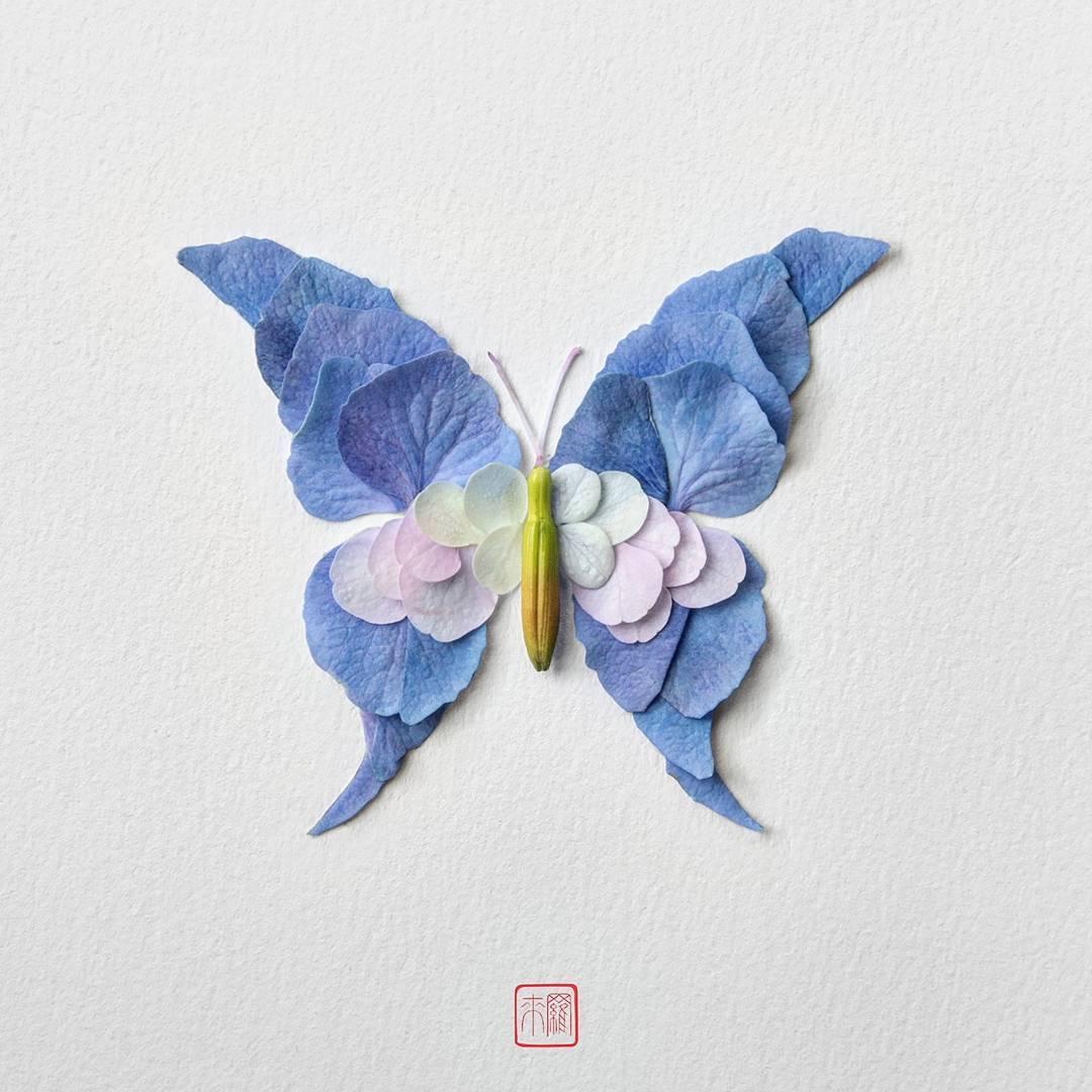 Çiçekten Kelebekler