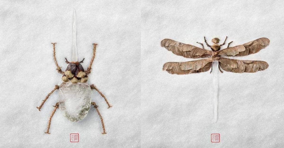 Yapraklardan Buzdan Oluşan Kolaj Böcekler