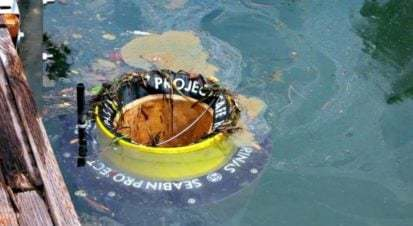 Deniz Temizleyen Çöp Kutusu Seabin Görevine Başladı