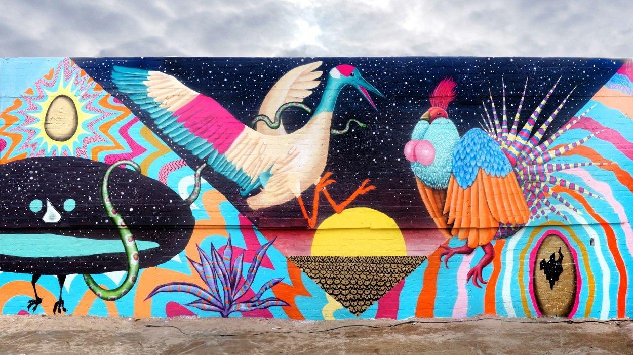 Varoluşun Renklerini Belgeleyen Murallar