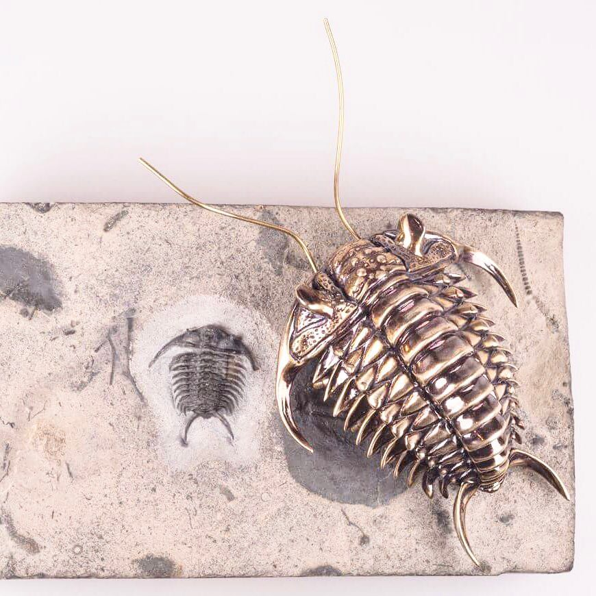 Bilim İnsanından Fosil Heykelleri