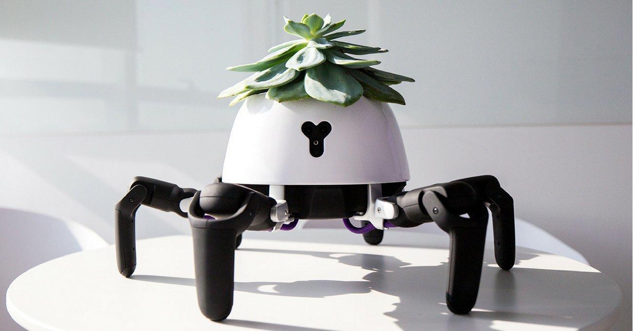 Çiçeği İçin Güneşi Kovalayan Robot