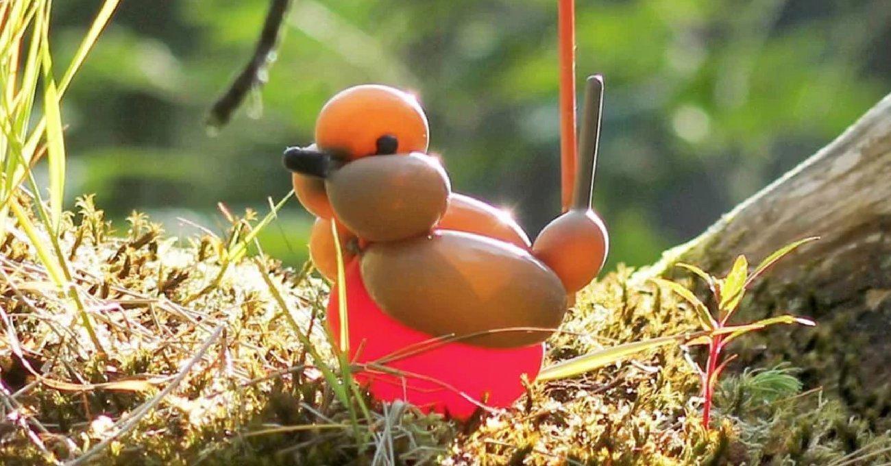 Doğal Ortamlarında Yaşayan Balondan Kuşlar