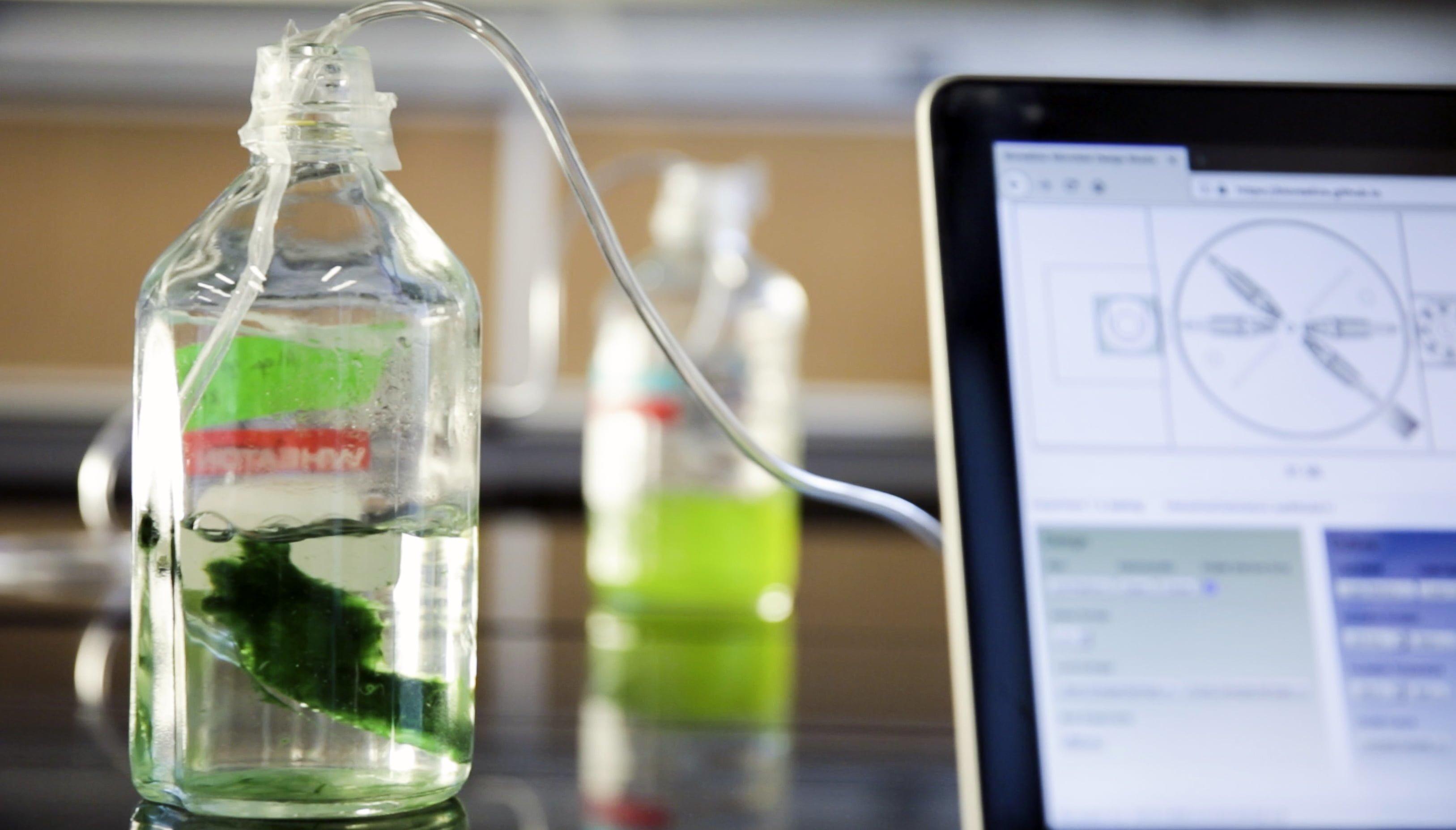 puma_mit design lab_bio tasarım_bigumigu_5