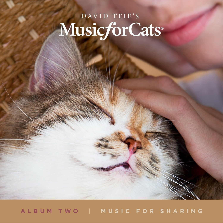 whiskas_bbdo toronto_cat calming radio_kanada_bigumigu_