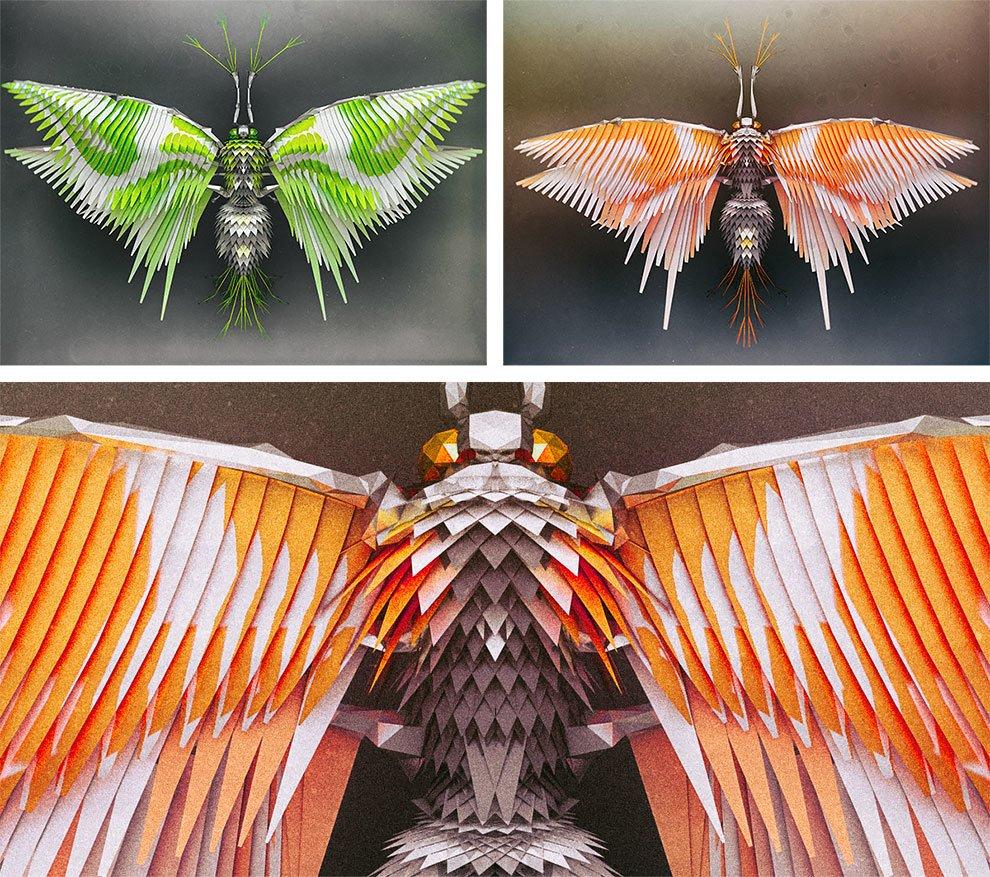 Çokgen Anatomili Böcekler