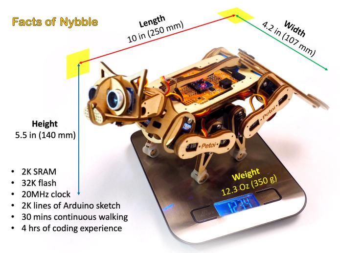 Robotik Kedi Nybble