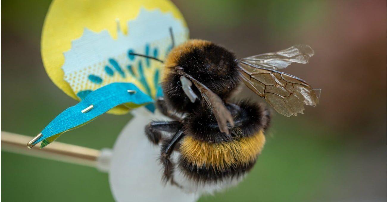Böcekler Aç Kalmasın Diye Tasarlanan Yapay Bitkiler