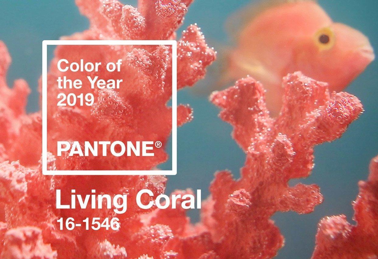 Pantone 2019 Yılının Rengini Living Coral Olarak Belirledi
