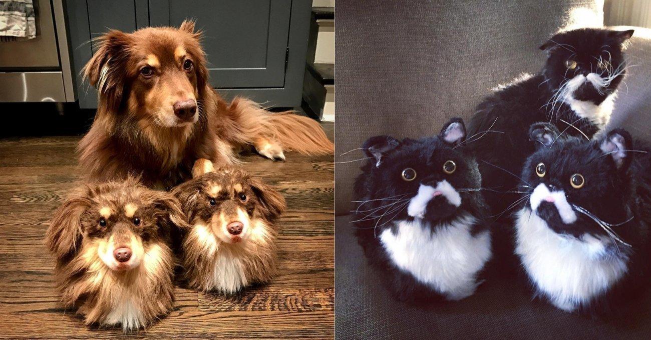 Cuddle Clones: Evcil Hayvanların Kopyası Terlikler Yapan Girişim