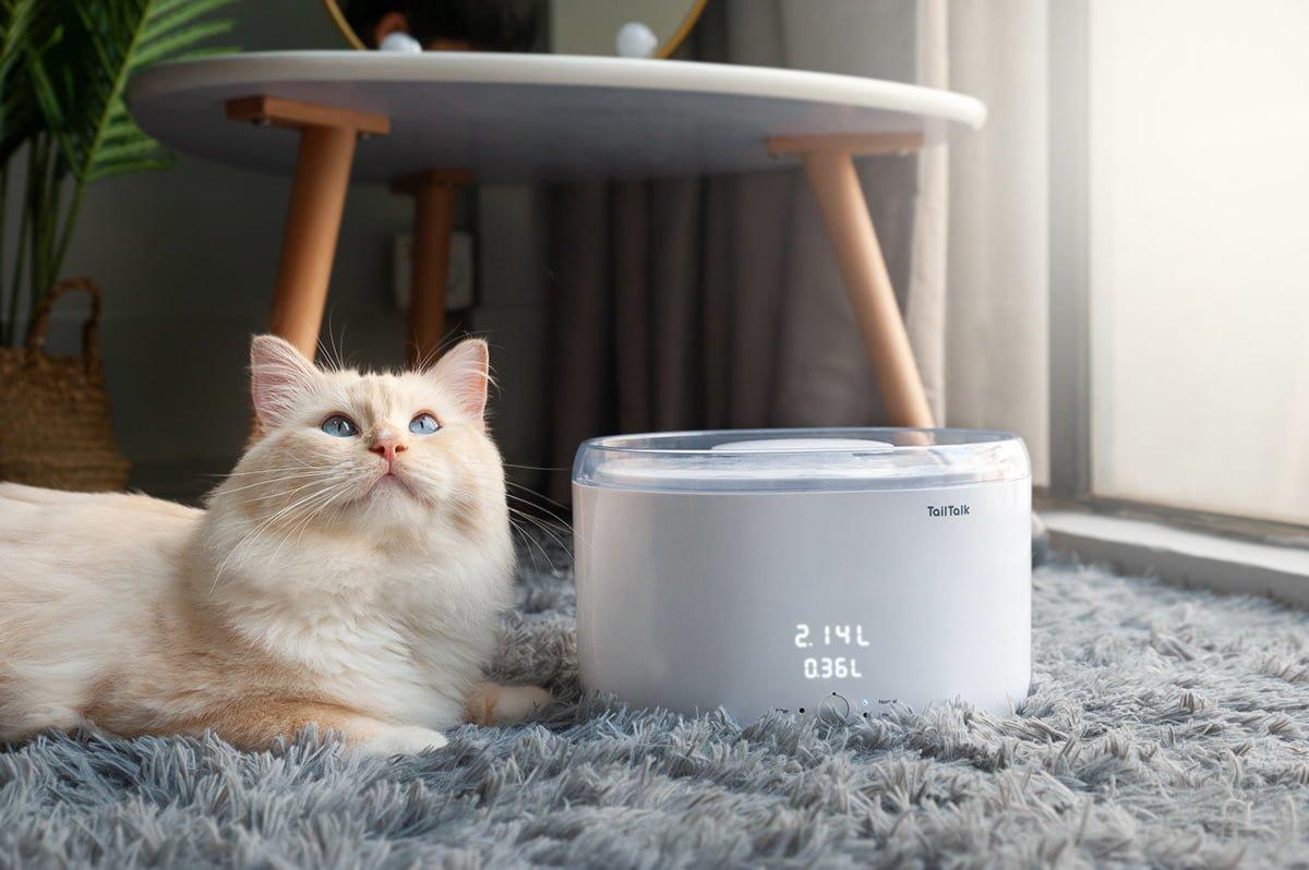 TailTalk: Evcil Hayvanlar için Akıllı Su Pınarı