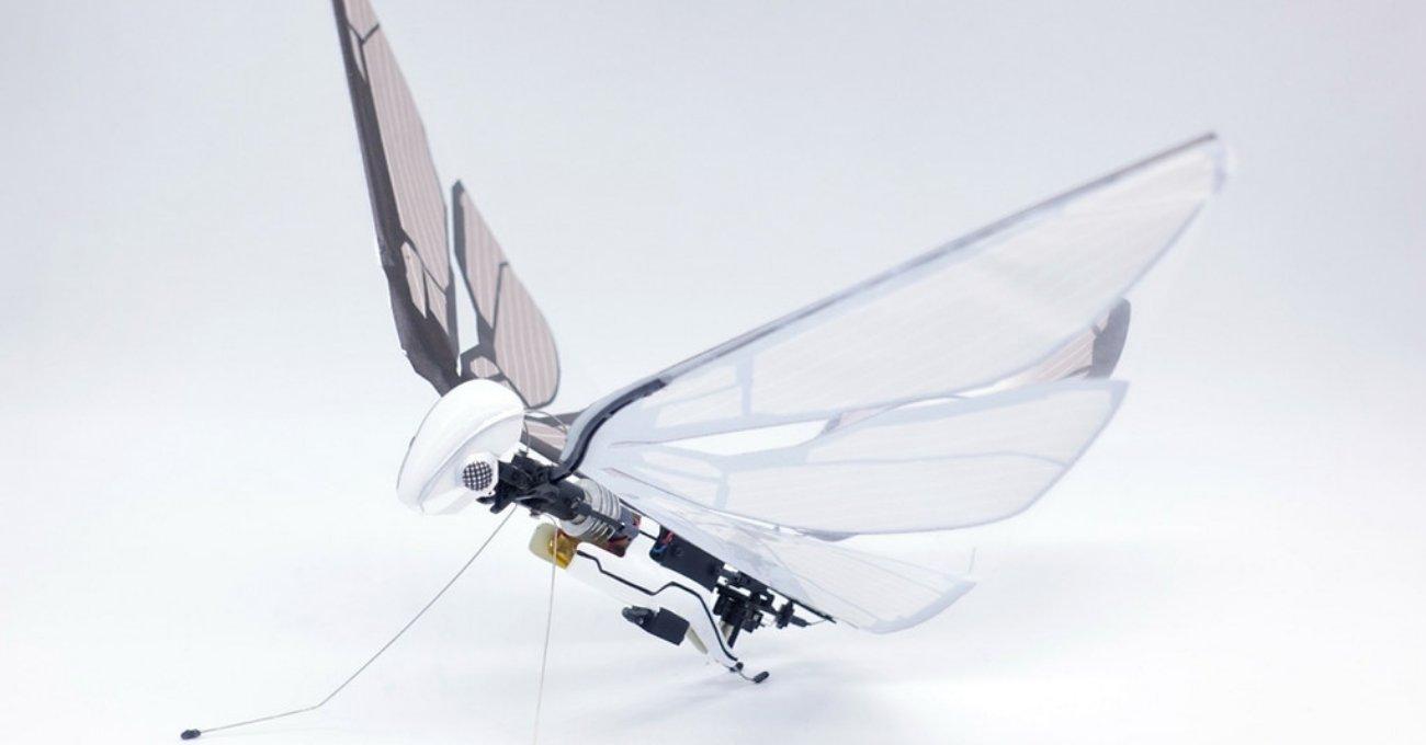 Kuş Gibi Kanat Çırparak Uçan Robotik Yaratık: MetaFly