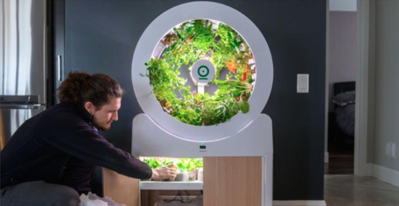 Meyve ve Sebze Yetiştirilebilen Akıllı İç Mekân Bahçesi