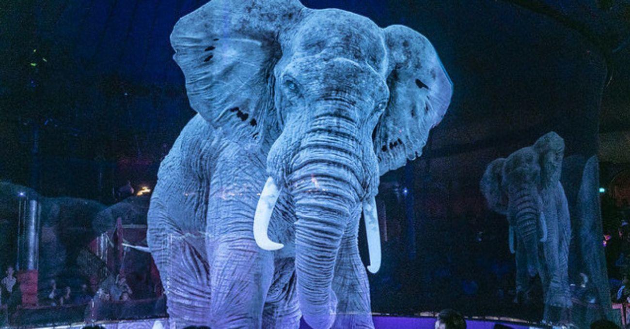Gerçek Hayvanlar Yerine Hologramların Sahne Aldığı Sirk