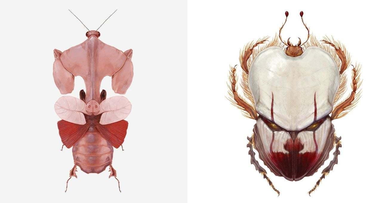 Popüler Kültür Böcekleri