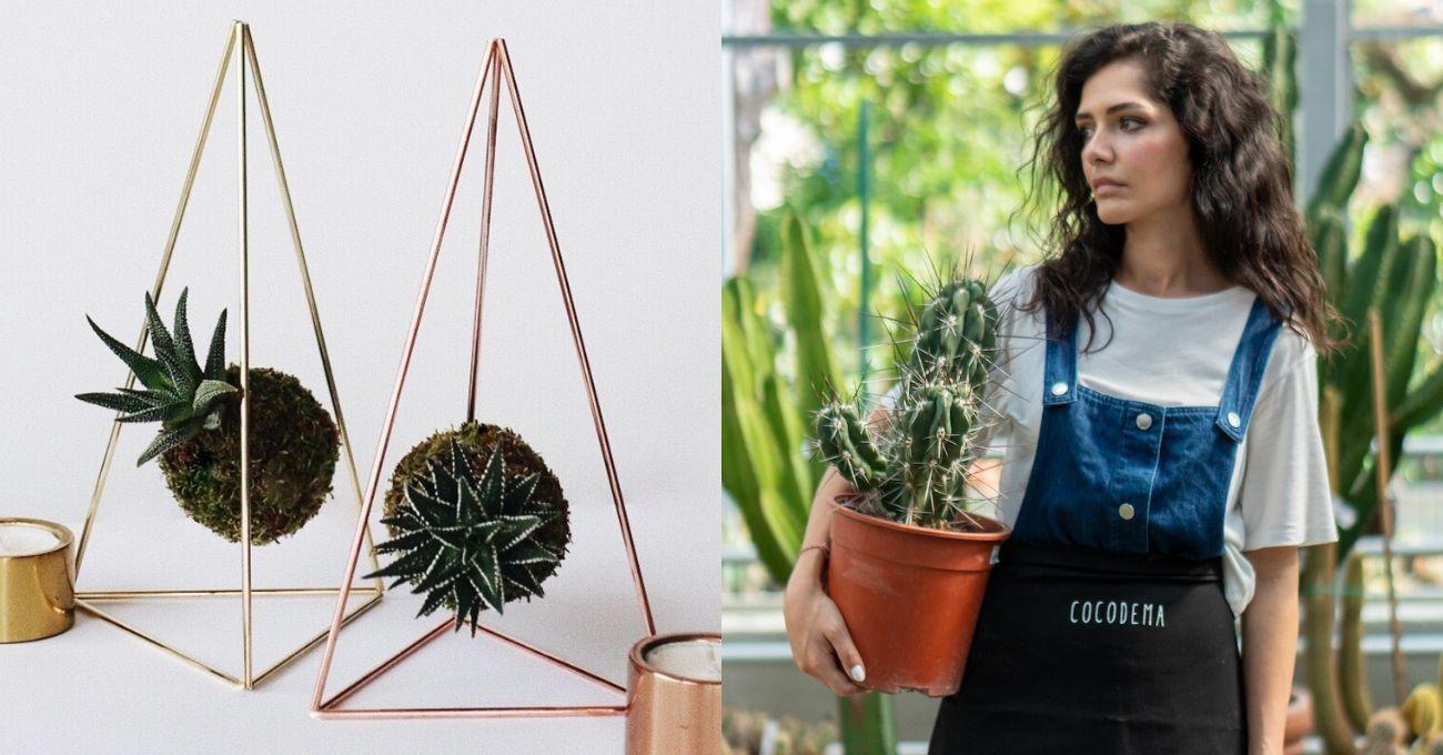 Sürdürülebilir Bitki Tasarımcısı Sibel Gürcüoğlu ile Cocodema'yı Konuştuk