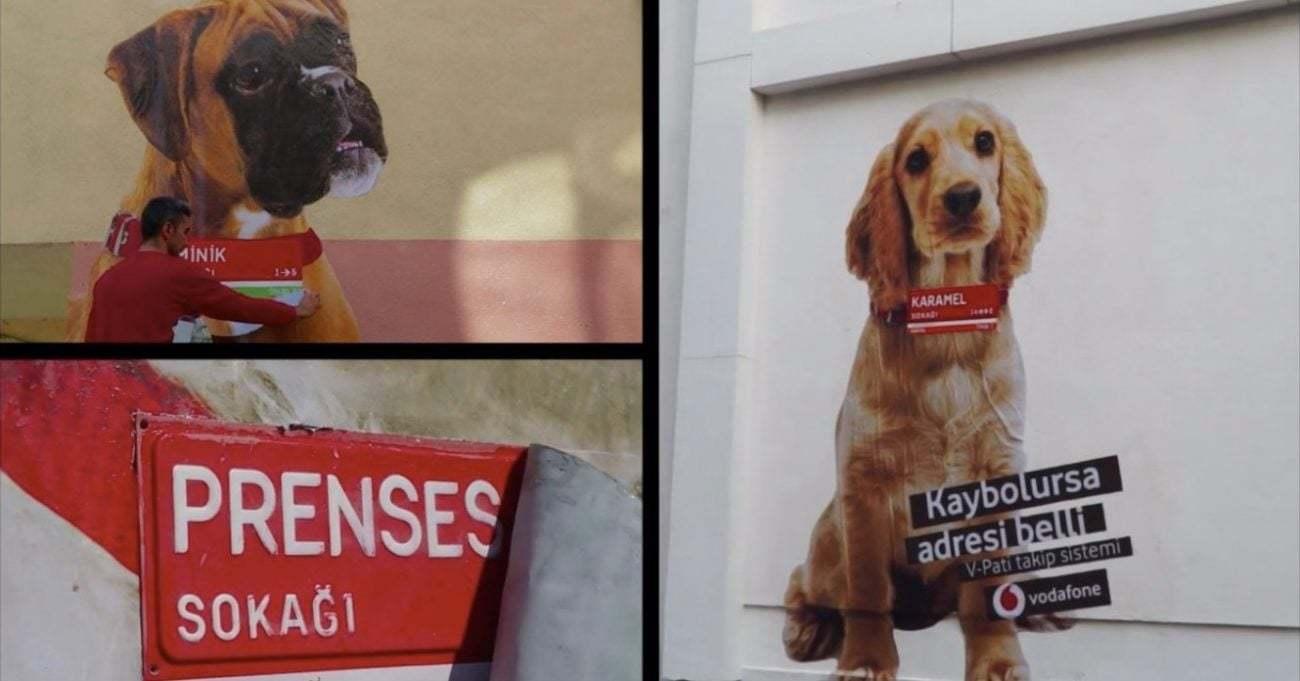 Vodafone Sokak Tabelalarını Köpek Tasmalarına Dönüştürdü
