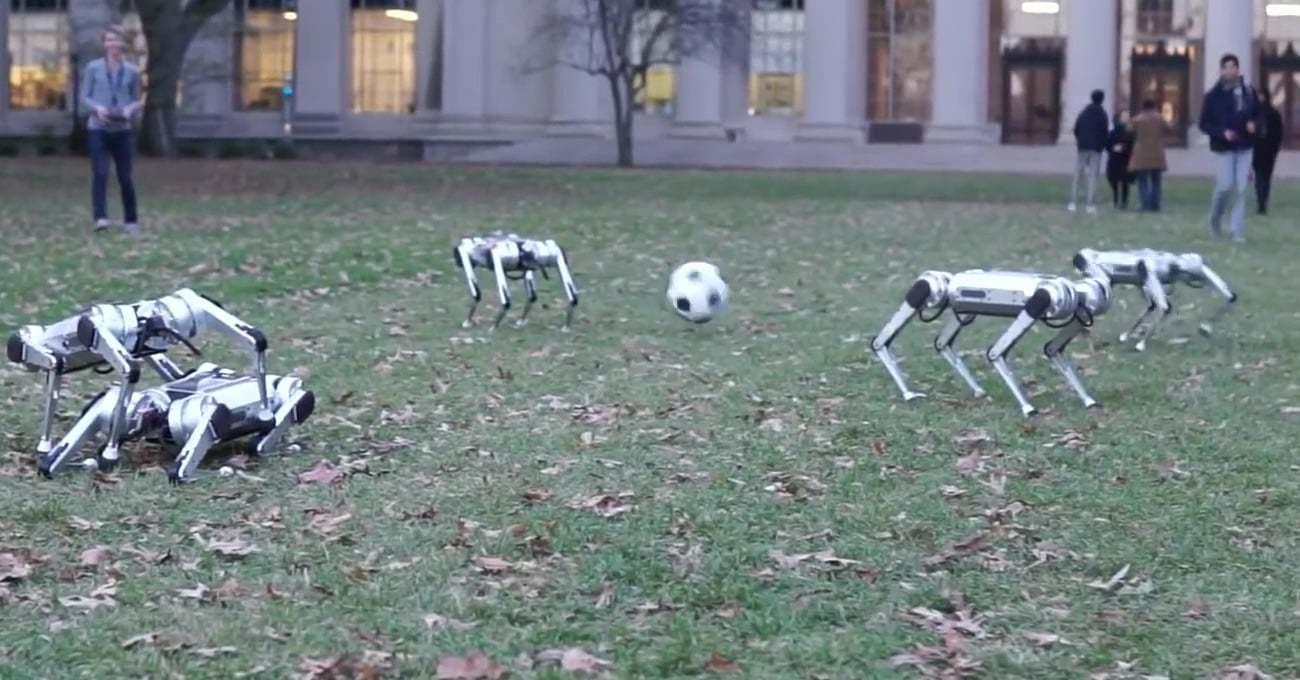 Spot'u Anımsatan MIT'nin Mini Cheetah Robotları Bir Topun Peşinde