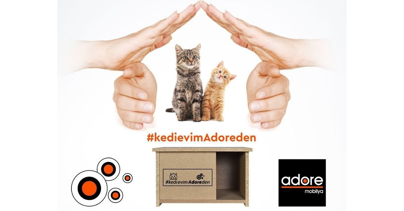 Adore Hasarlı Mobilyalardan Yaptığı Kedi Evi Kampanyasını Sürdürüyor