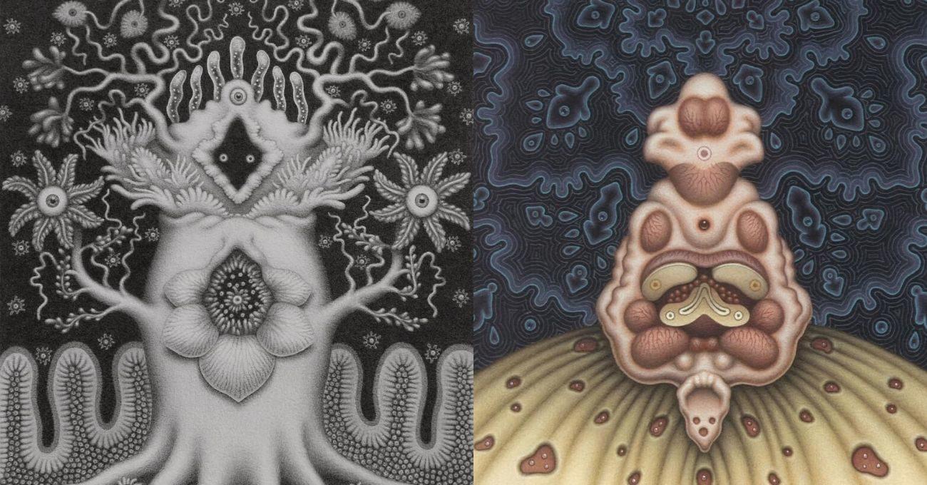 Catriona Secker'ın Biyoloji Kitaplarından Esinlendiği Tuhaf Varlıklar