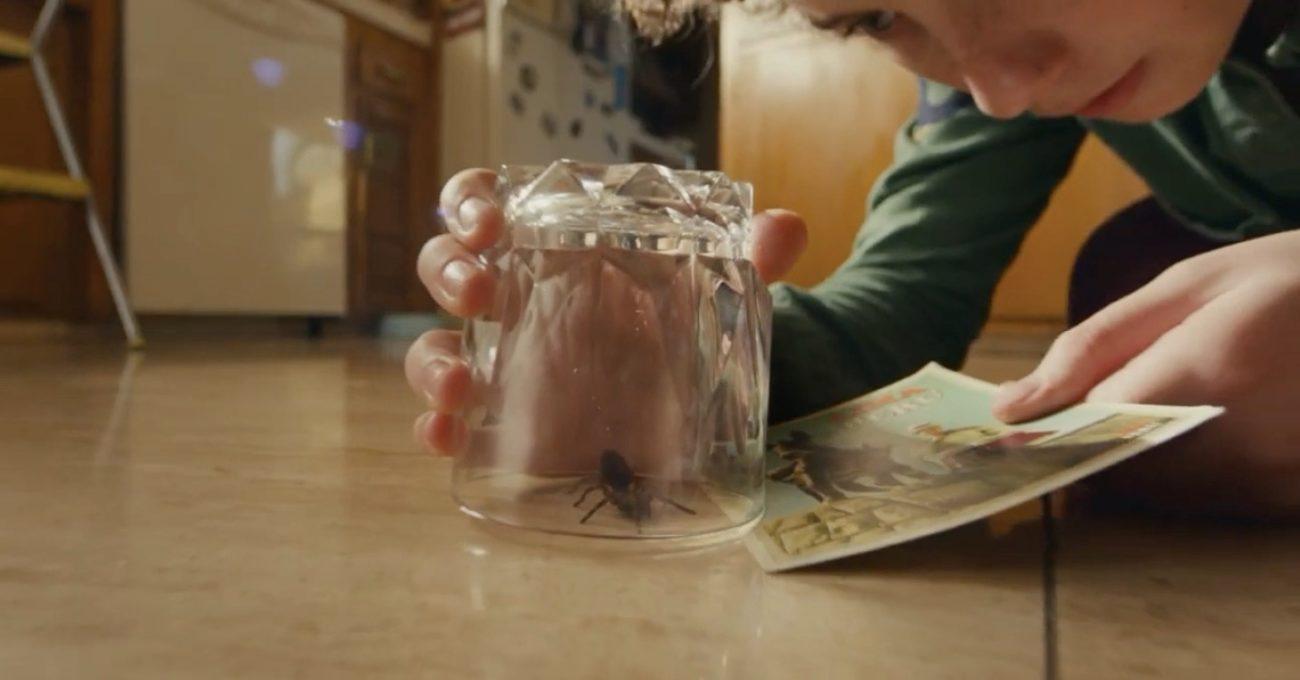 Tek Başına Örümcek Yakalayabiliyorsan Vergi İşlemlerini de Halledebilirsin