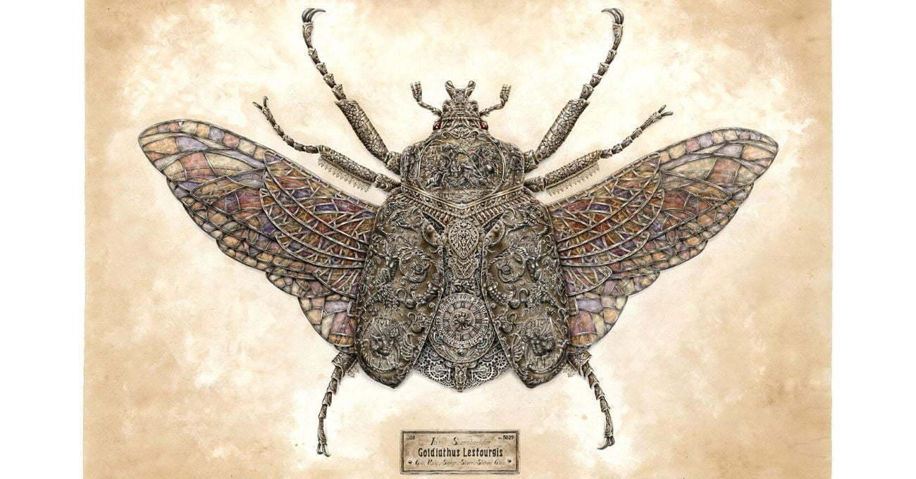 Mücevher Gibi Böcekler