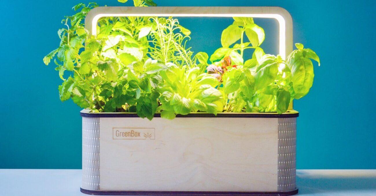 İç Mekanlar için Akıllı Bahçe: GreenBox