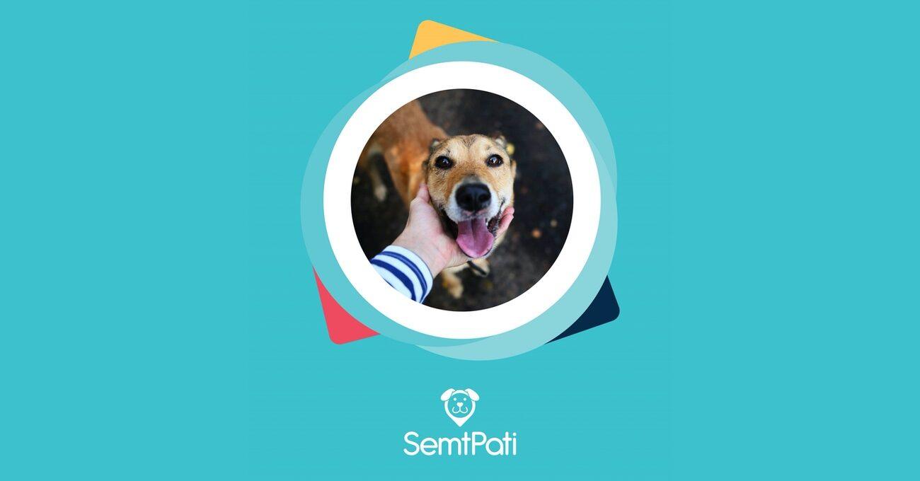 Belediyeyi Veterinerleri ve Gönüllüleri Buluşturan Platform: SemtPati