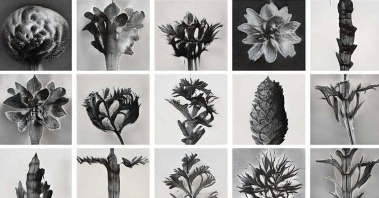 Yapay Zekayla Yaratılan Hibrit Bitki Animasyonları