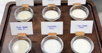 bitkisel süt