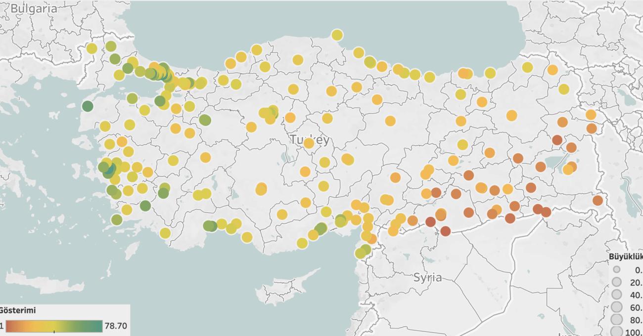 Türkiye'nin İlk İlçe Bazlı Toplumsal Cinsiyet Eşitliği Endeksi