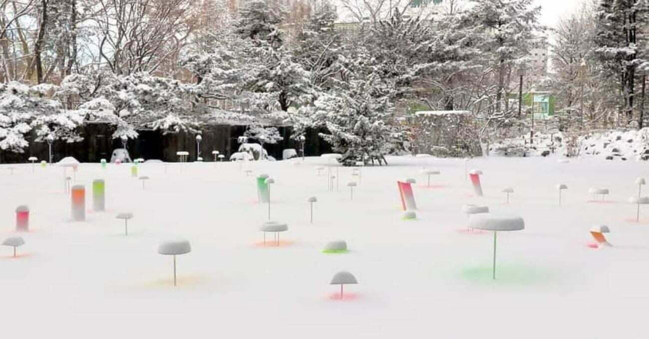 Snow Pallet 13