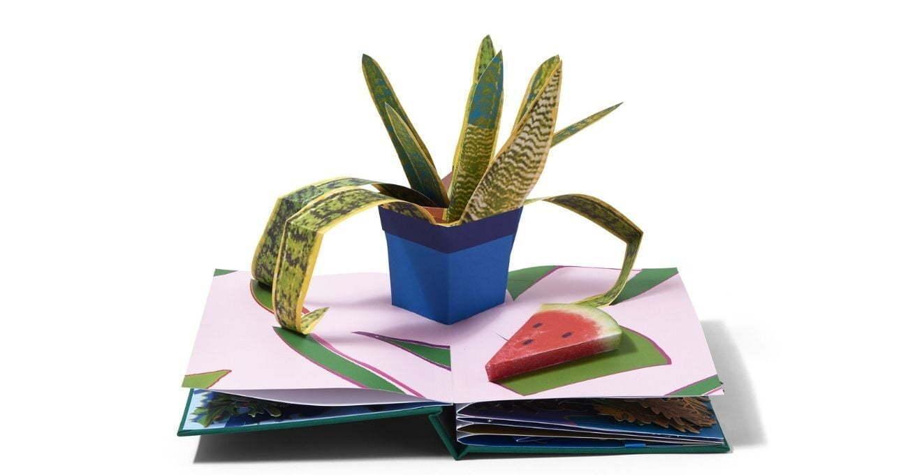 Kolaj Bitkilerden Oluşan Pop-Up Kitap