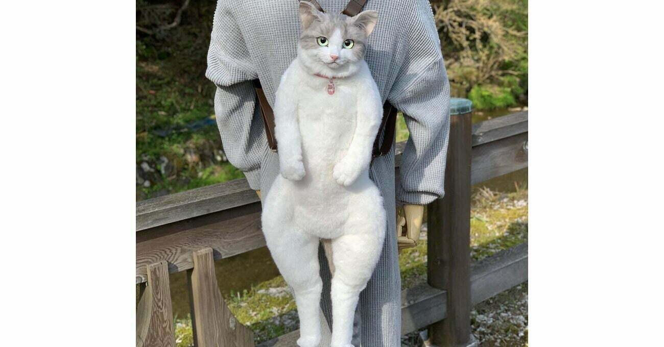 Kedi Değil Sırt Çantası