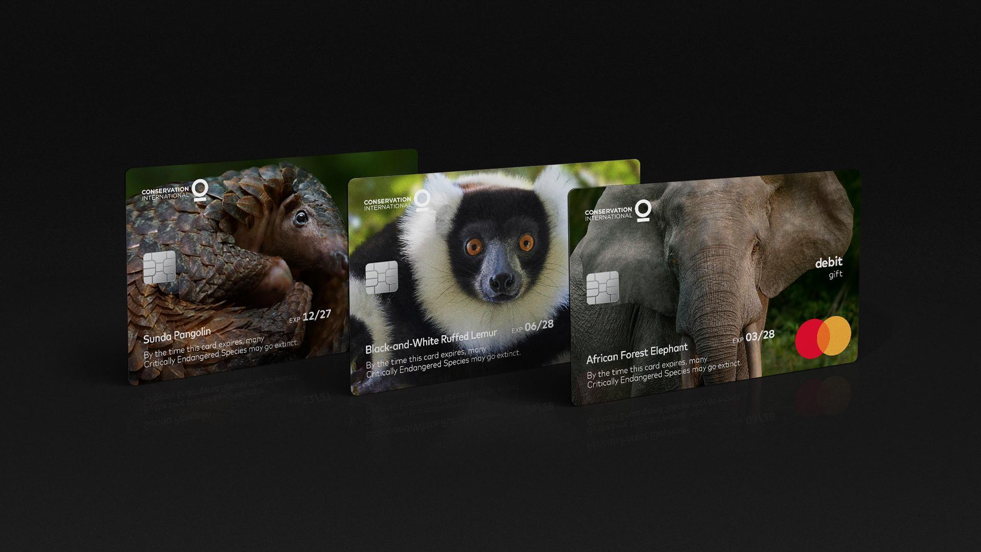 wildlife impact