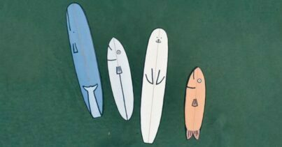 Sea Animal Boards