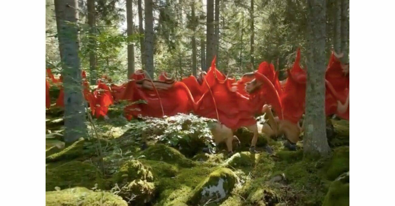 Francois Vogel'in Gerçekliği BükenKırmızı Yağmurluklu Adamları
