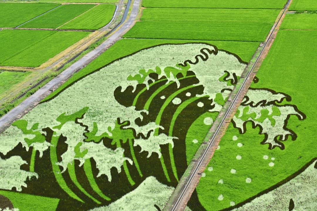 pirinç sanatı
